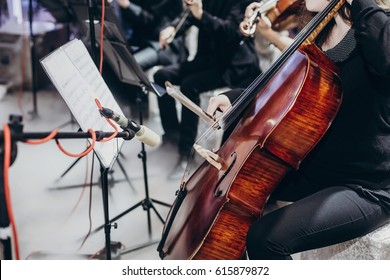 musician playing on contrabass at luxury wedding reception. string quartet performing at expensive wedding ceremony. bass and chords. performance and entertainment. space for text