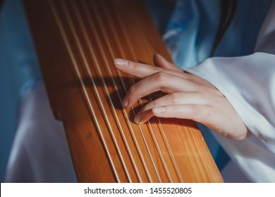 The musician plays the zither (stringed plucked musical instrument)
