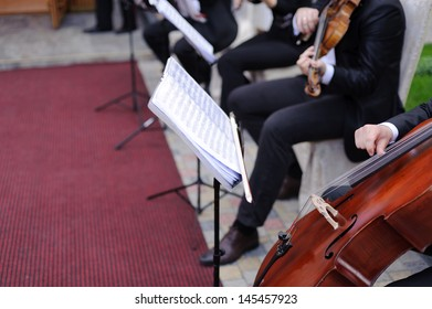 musicians playing cello and violin in yard
