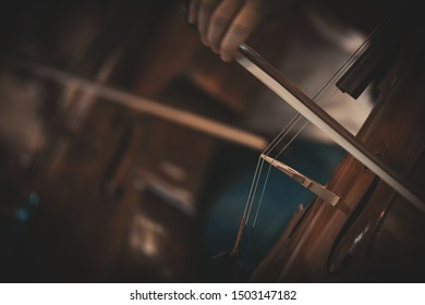 Musicians playing the double bass - close-ups - backgrounds