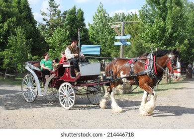 MUSKOGEE, OK - MAY 24: Visitors enjoy horse  and buggy ride at the Oklahoma 19th annual Renaissance Festival on May 24, 2014 at the Castle of Muskogee in Muskogee, OK.