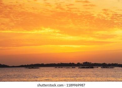 Mussel aquaculture rafts at golden sunset in Arousa estuary