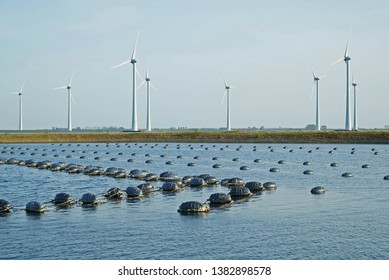 Mussel banks in the Oosterschelde in Zeeland with windmill park Krammer near Bruinisse on the background
