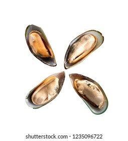 mussel isolated on white background