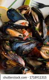 Mussels. Classic French or American restaurant appetizer: steamed mussels. Shellfish steamed with white wine, butter, garlic, onions and fresh herbs. Served with butter toasted baguettes.