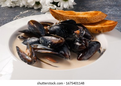 mussels in cream sauce with baguette. Horizontal frame