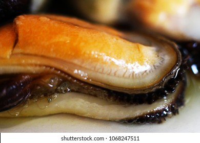 mussels, delicious seafood on white background, so close