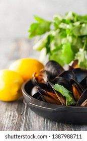 Mussels with herbs  in a bowl with lemon . Seafood.  Dark background