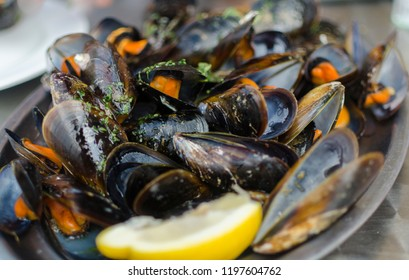 Mussels with lemon sauce. Seafood.