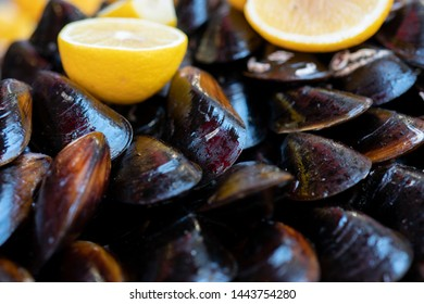 Mussels with lemon sauce. Seafood. Shellfish mussels. Copper pot of gourmet mussels served with lemon slices. Top view.