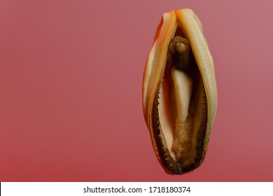 Mussels on a red background.