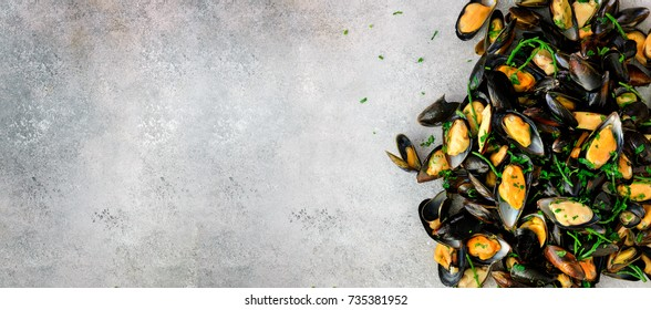 Mussels on stone concrete background. Top view, copy space. Banner