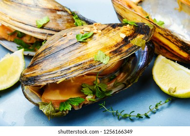 Mussels in plate with lemon and herbs.Mussels with lemon.Seafood