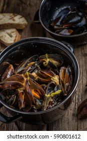 mussels in a pot, top view