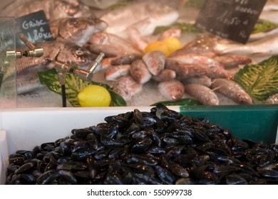 Mussels with red mullet on fish market stall.
