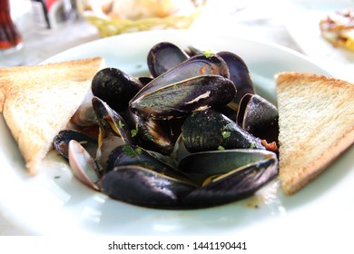 Mussels and toast on white plate