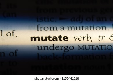 mutate word in a dictionary. mutate concept.