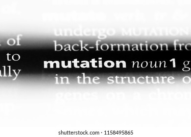 mutation word in a dictionary. mutation concept.