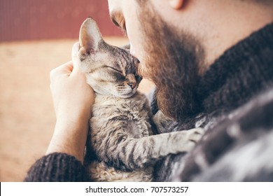 Muzzle of a cat and a mans face. Close-up of handsome young man and tabby cat two profiles. The Devon Rex cat with the owner. Cat gently pressed. Love cats and humans. Relationship, weasel.