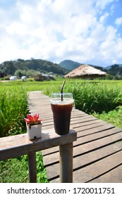 My coffee and comfortable day among rice fields on the mountain, Chiang mai Thailand.
