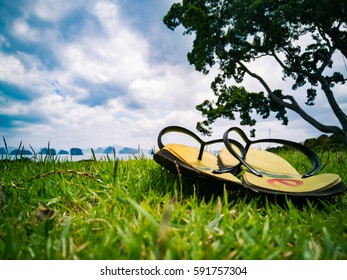 My holidays with green pairing shoes are set on green grass. And there are sea and islands.