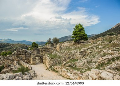 Mycenae ancient Greek city archaeological ruins in landmark nature rocky environment with lonely tree on Peloponnese peninsula area , world heritage and tourist sightseeing concept
