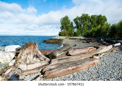 Myrtle Edwards Park in Seattle includes small beached areas.