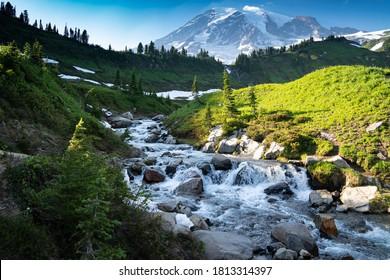 Myrtle Falls dans le parc national Mount Rainier dans l'état de Washington