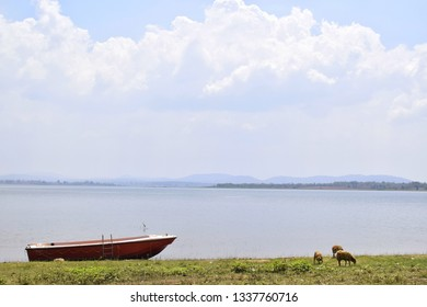Mysore, Karnataka, India - Mar 9, 2019: Kabini Reservoir.