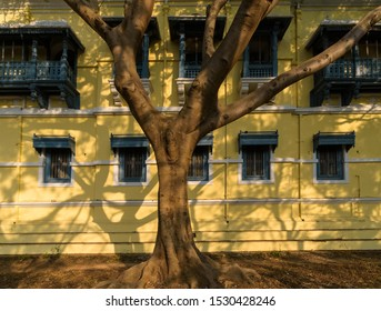Mysore, Karnataka/India - January 24 2019: The exterior of one of the buildings inside the Mysore Palace complex. A tree casts shadows on the windows and boxed wooden balconies on the yellow walls.