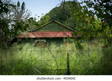 Mysterious abandoned building with rusted red roof amidst tropical vegetation.
