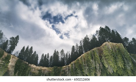 Mysterious aerial view with fir tree forest at the edge of the cliff and sky reflection in water.