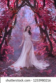 mysterious attractive lady in a long light luxury dress in a magical pink forest, gate to the fairy-tale world, cute witch owl sits on the shoulder of dark-haired princess, elf girl with bare leg