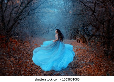mysterious attractive woman in luxurious puffy blue dress runs away looks back. fabulous Princess in gothic autumn forest. Silk Fabric and dark long hair flutter in motion. Fog, orange fallen leaves.