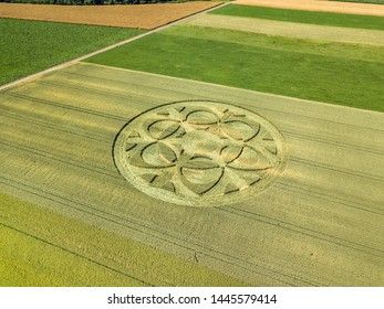 Mysterious crop circle emerged overnight in wheat field with beautiful pattern