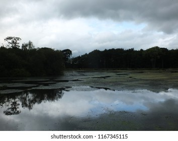 A mysterious dark evening lake with dramatic clouds reflected in the water and trees along the shore