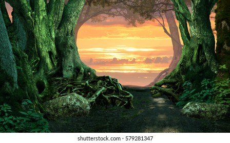 Mysterious dark forest landscape with sunset sky