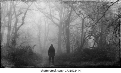 A mysterious figure back to camera,  looking down a path in a spooky forest. On a winters day. With a grunge, textured edit.