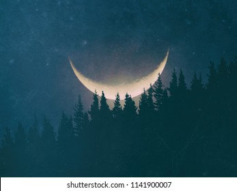 mysterious forest at night with big moon and grungy textures