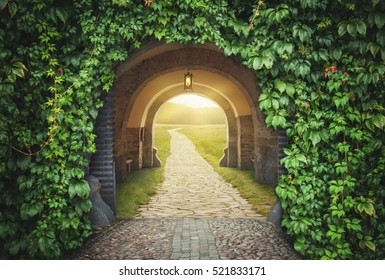 Mysterious gate sunny entrance.  New life or beginning concept
