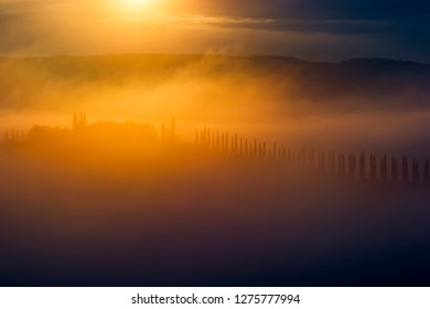 Mysterious house with row of cypress trees in early morning golden sun and mist