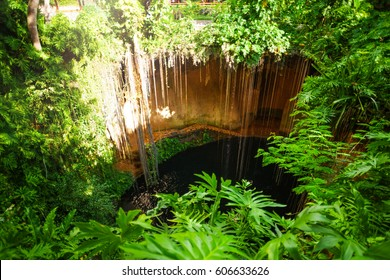 Mysterious Ik-Kil cenote with hanging roots