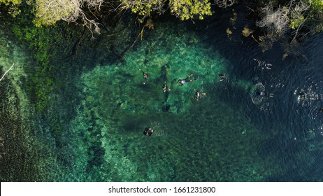 Mysterious Lagoon in Bonito state of Mato Grosso