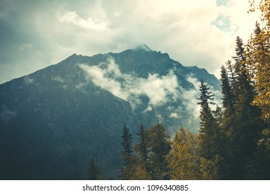 Mysterious landscape the dense fog falling on the mighty Tatras Mountains in Slovakia. Beauty and strength of wild untouched nature. Ideal background for fairy tales illustrations and collages.