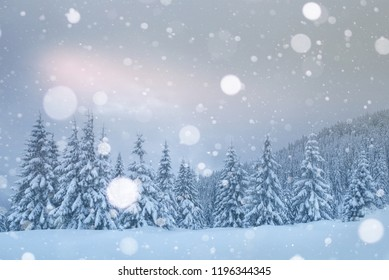 Mysterious landscape majestic mountains in winter. Magical snow covered tree. Photo greeting card. Bokeh light effect, soft filter. Carpathian Ukraine Europe.