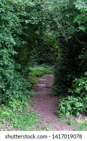 Mysterious pathway in the park of Steinfeld Abbey