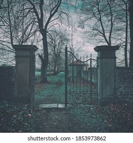 A mysterious view of an antique metal gate with autumn bare trees and fallen dry foliage