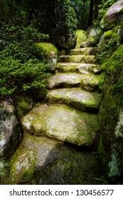 Mysterious-looking stone stair covered in moss near Tatsumaki-jigoku in Beppu, Japan