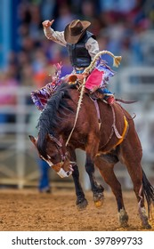 Mystery cowboy bucks on wild mustang in Florida Rodeo