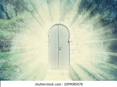 Mystic door in a dreamy rosegarden  with sunbeam